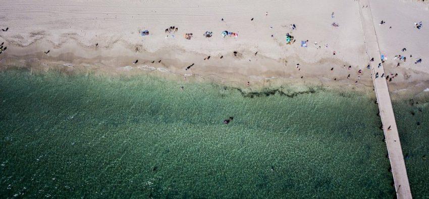 clear water beach sydney